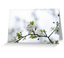 I heart Spring Greeting Card