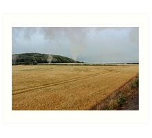 Countryside from a steam train Art Print