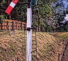 Signal on the North Norfolk Railway by Avril Harris