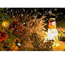 Frosty in a Snowstorm Photographic Print