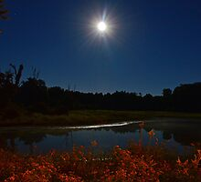 """The """"Midday"""" Moon by Dennis Maida"""
