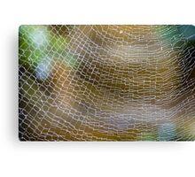 Golden Silk Orb Weaver's Web Pattern Detail Canvas Print