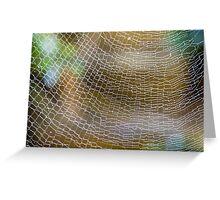 Golden Silk Orb Weaver's Web Pattern Detail Greeting Card