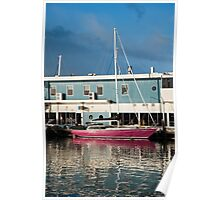 The Pink Boat Madhannah Poster