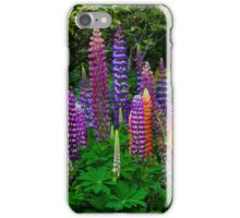LUPINS iPhone Case/Skin