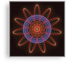 Star Weaver Canvas Print