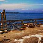Long Island - Shelter Island  by Kevin Durst