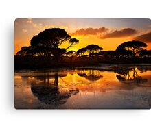 Sunset @ Strofilia forest, Prokopos lake Canvas Print