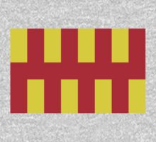 Northumberland County Flag by cadellin