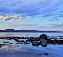 Sears Island, Maine by fauselr