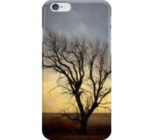 Tree IPhone Case iPhone Case/Skin