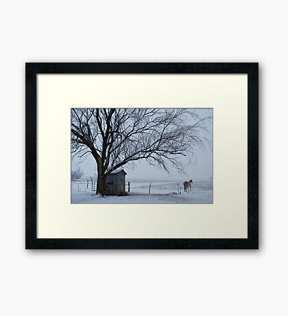 Horse in Snowy Prairie Landscape Framed Print