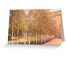Colors of Automn !! Greeting Card