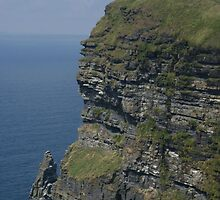 Cliffs of Moher, Co. Clare, Ireland by Allen Lucas