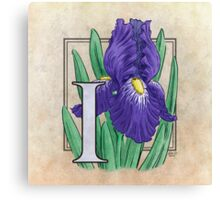 I is for Iris - full image Canvas Print