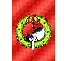 Christmas Kitty Wreath Photographic Print
