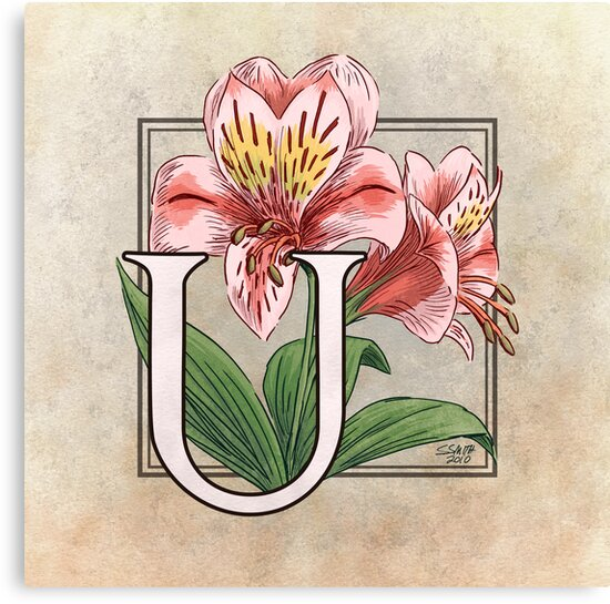 U is for Ulster Mary shirt by Stephanie Smith