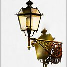 Florence Lantern by Robyn Carter