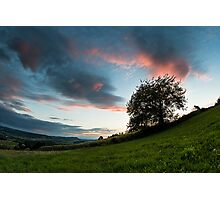 Tree sunset Photographic Print