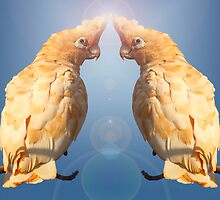 Cloned Parrot by Mark Ingram
