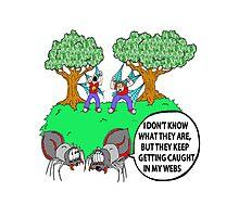 Spider Web Humor Photographic Print