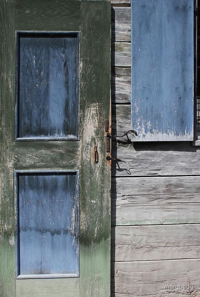 Green Door Blue Window by marybedy