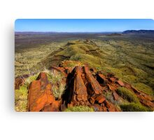 Mt Bruce Canvas Print