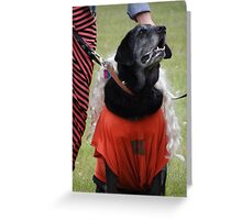 Hey! I can hear you talking about me! Greeting Card