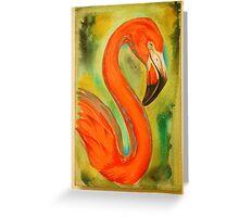 flamingo. Greeting Card