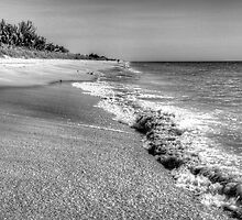 Captiva Shore by Bill Wetmore