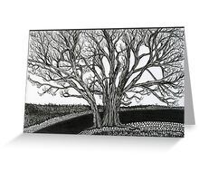 Solitary, A Tree Ink Drawing Greeting Card