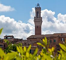 Siena Bell Tower by Adrian Alford Photography