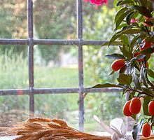 The Tuscan Window by Adrian Alford Photography