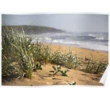 North Sapphire Beach Poster