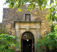 The Alamo by Carolyn Boyden