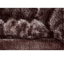 Sepia forest drawing Photographic Print