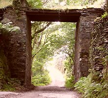 ancient slate tunnel in the forest by kellysorcha