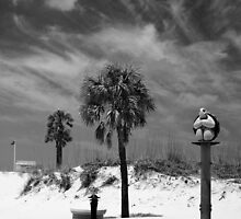 Clearwater Beach 5 by Wrayzo