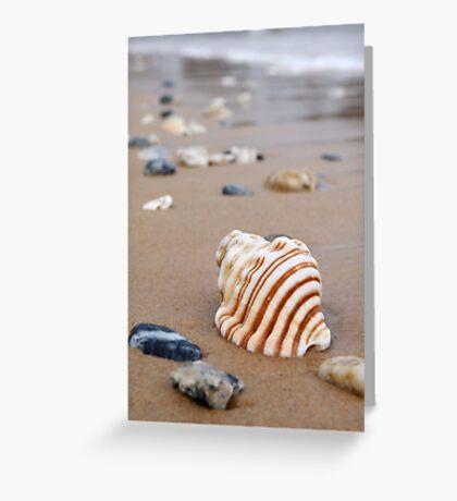 Summer sands Greeting Card