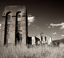 Blast Furnace ruins back view by Hilarynathan