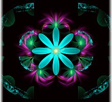 The heart of a flower by Pam Amos
