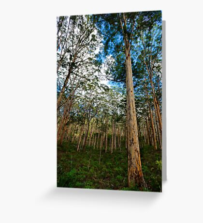 Forest Giant Greeting Card