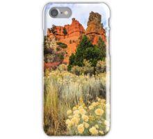 Red Canyon Area Utah iPhone Case/Skin