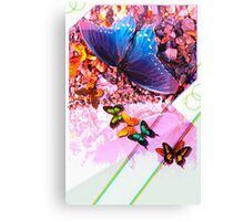 Butterfly graphic with grey gradient Canvas Print