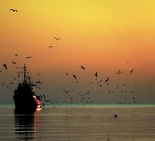 The Return of the Fishing Boat by Steve Ivanov