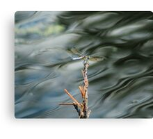 Dragonfly On Abstract Pond Canvas Print