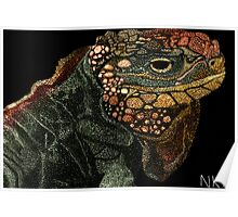 Andros Iguana (Colorized) Poster