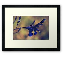 We're Two of a Kind Framed Print