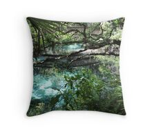 Fern Hammock Springs Throw Pillow