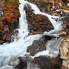 Rapid chutes by zumi